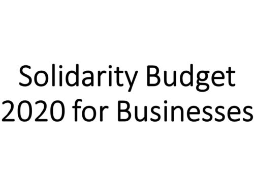 Solidarity Budget 2020 for Businesses